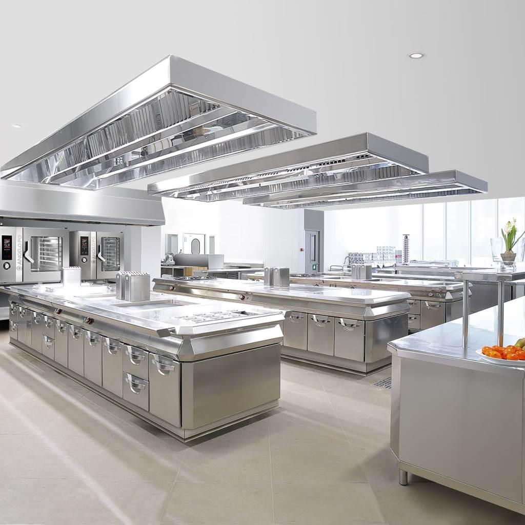Cocina profesional dise o italiana casa dise o casa dise o for Cocina profesional
